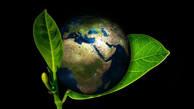 الأرض، بيولوجيا، جيولوجيا، تطور، الانقراض العظيم