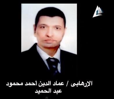 عماد الدين عبد الحميد