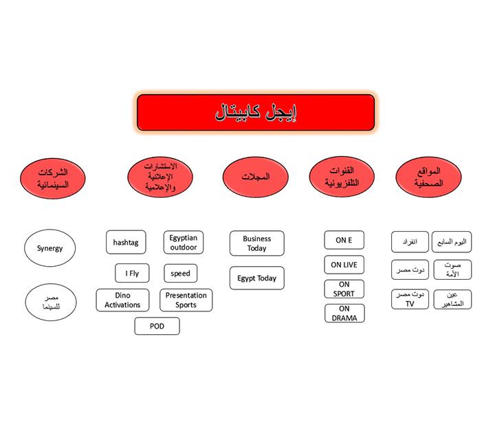 الإعلام المصري, داليا خورشيد, مصر, شركات, إعلام, فضائيات