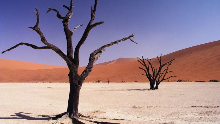 أفريقيا, المناخ, النغير المناخي, صحراء