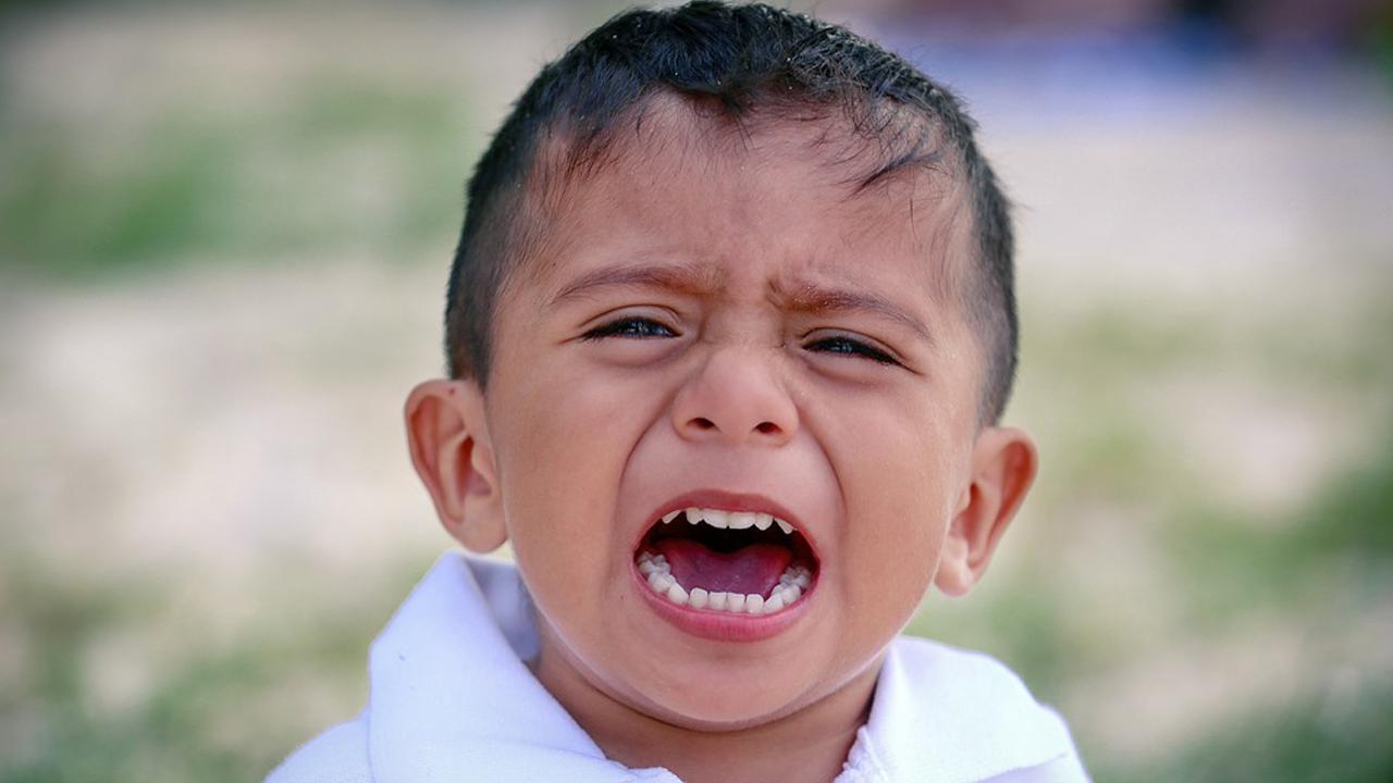 طفل، يبكي، الآباء