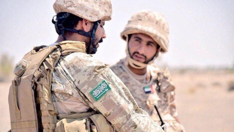 جزيرة سقطرى, الجيش الإماراتي, الجيش السعودي, القضايا اليمنية