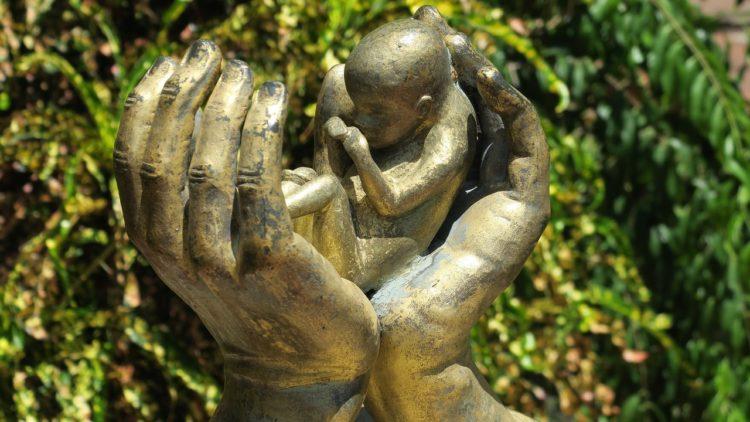 الإجهاض، النسوية، الأجنة، قضايا المرأة