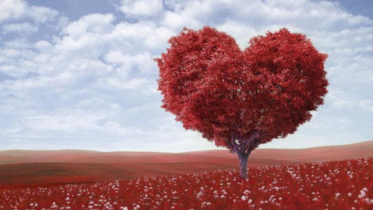 حب، إدمان، شجرة