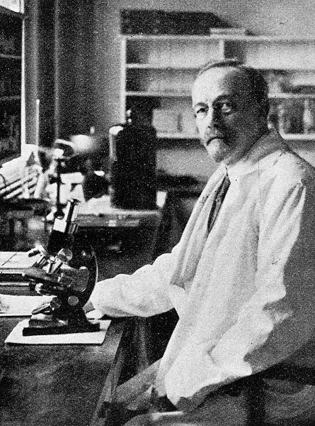 يوهانس فيبيجر، نوبل، جوائز نوبل، علوم، فيزياء، كيمياء، طب
