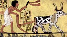 الزراعة في مصر الفرعونية