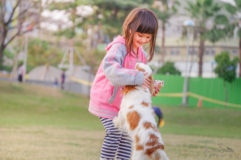 السعار, داء الكلب, كلاب, مرض, صحة, أطفال
