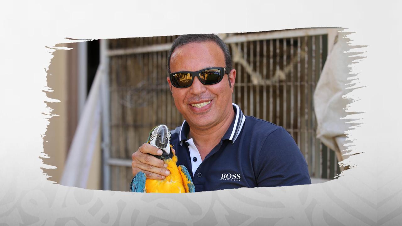 أيمن يونس, مصر, معلق رياضي