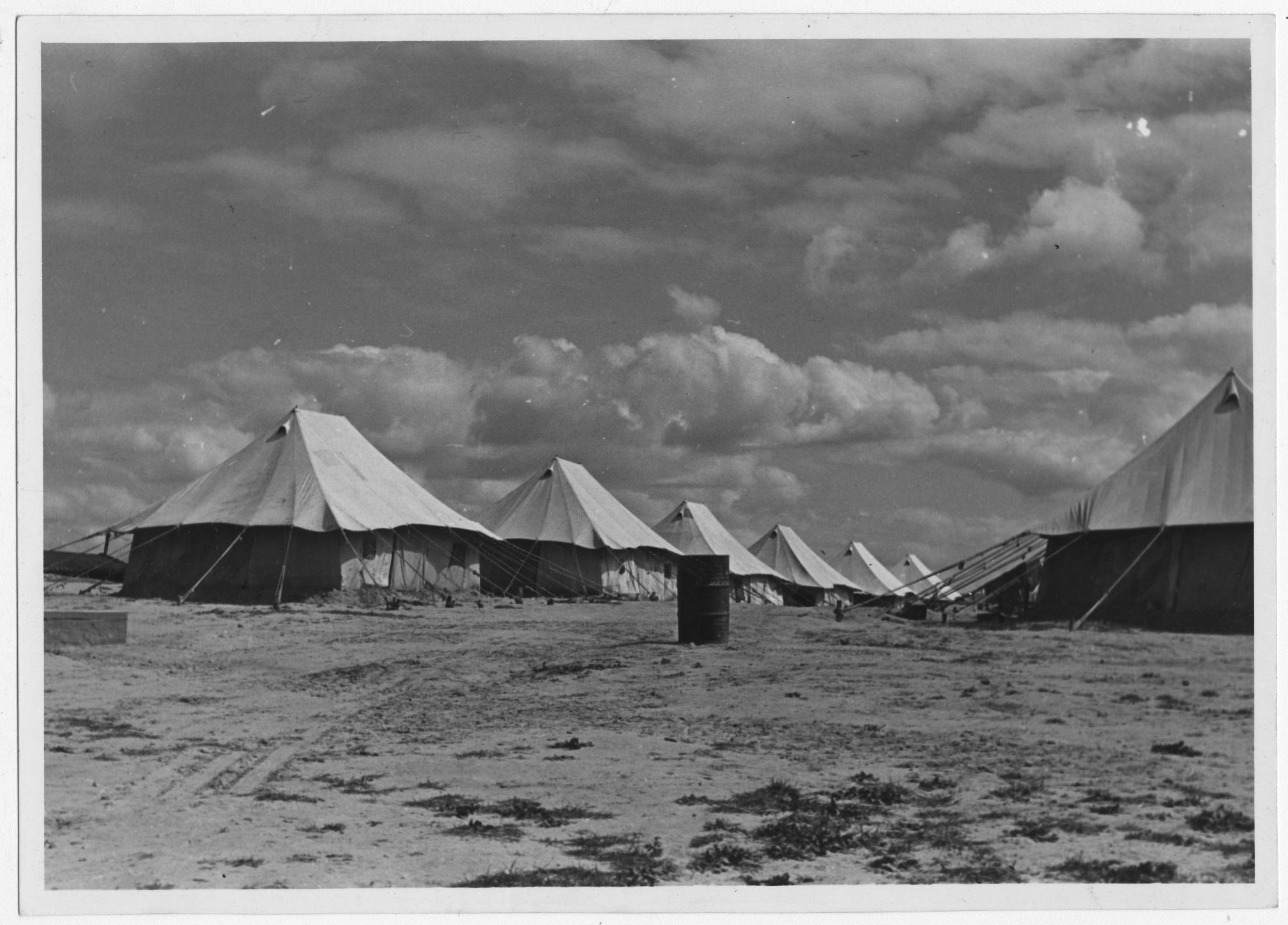 اللاجئون, فلسطين, مخيمات