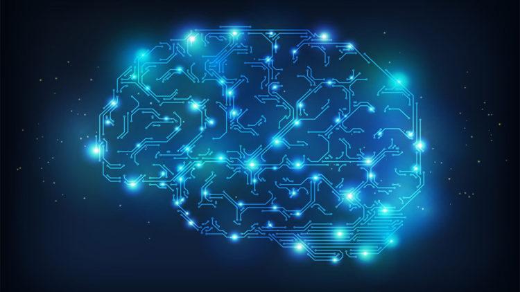 علم نفس، علم الأعصاب