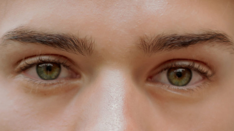 وجه, عيون, ملامح, رجل, سياسي