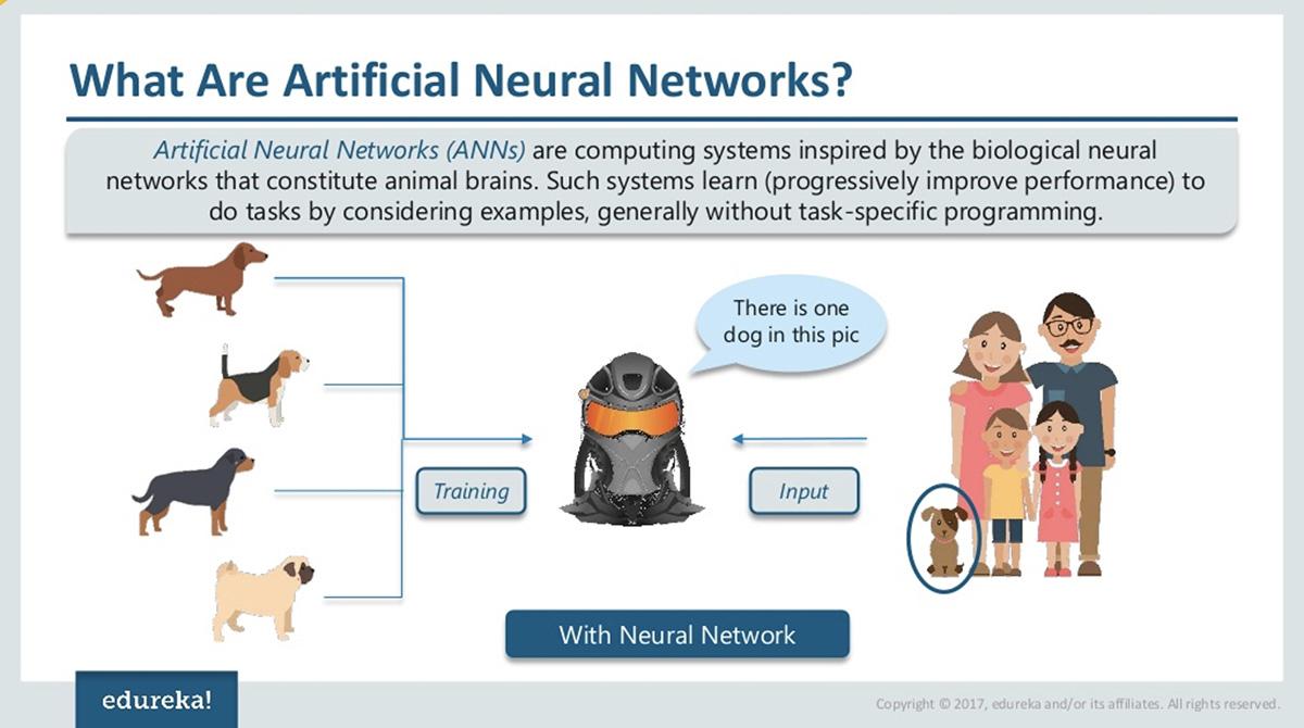 التعرف على صورة الكلب، باستخدام تقنيات الشبكات العصبية