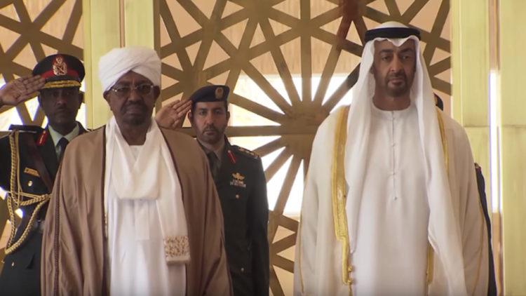 محمد بن زايد, عمر البشير, الإمارات, السودان