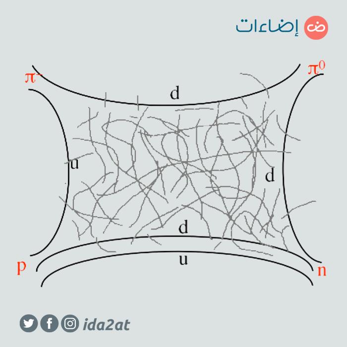 مخطط هراري-روزنر والأوتار الداخلية كخيوط شبكة الصيد
