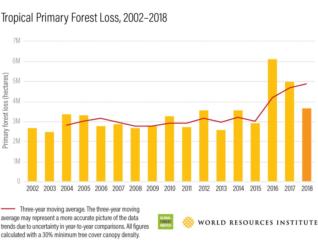 كم من الغابات فقدنا