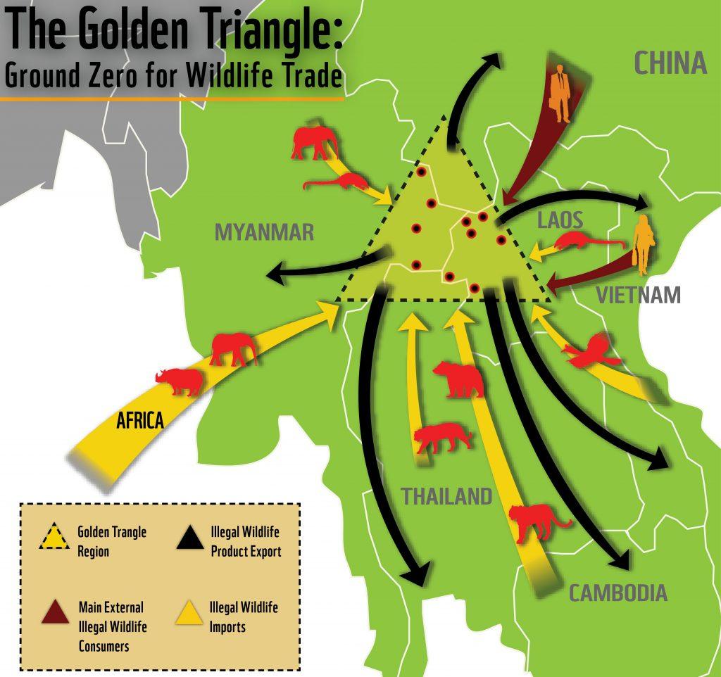 مثلث ميكونج الذهبي لتجارة الحيوانات البرية
