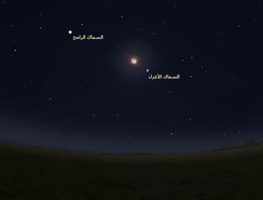 نجما السماك الرامح Arcturus والسماك الأعزل Spica فلك سماء الليل السماء الليلة