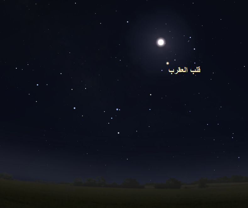 Antares ألمع نجوم برج العقرب Scorpius