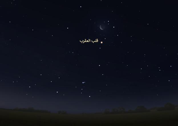 قلب العقرب  نجوم الشتاء رصد فلكي خريطة المساء السماء ليلا