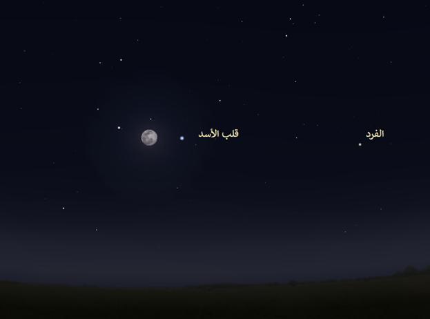 قلب الأسد الفرد نجوم الشتاء رصد فلكي خريطة المساء السماء ليلا